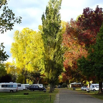 Omeo Caravan Park autumn evening